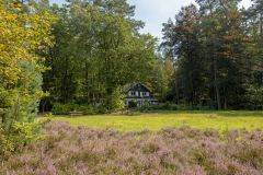 Vakantievilla Viva la Veluwe en privé tuin, bos en heide