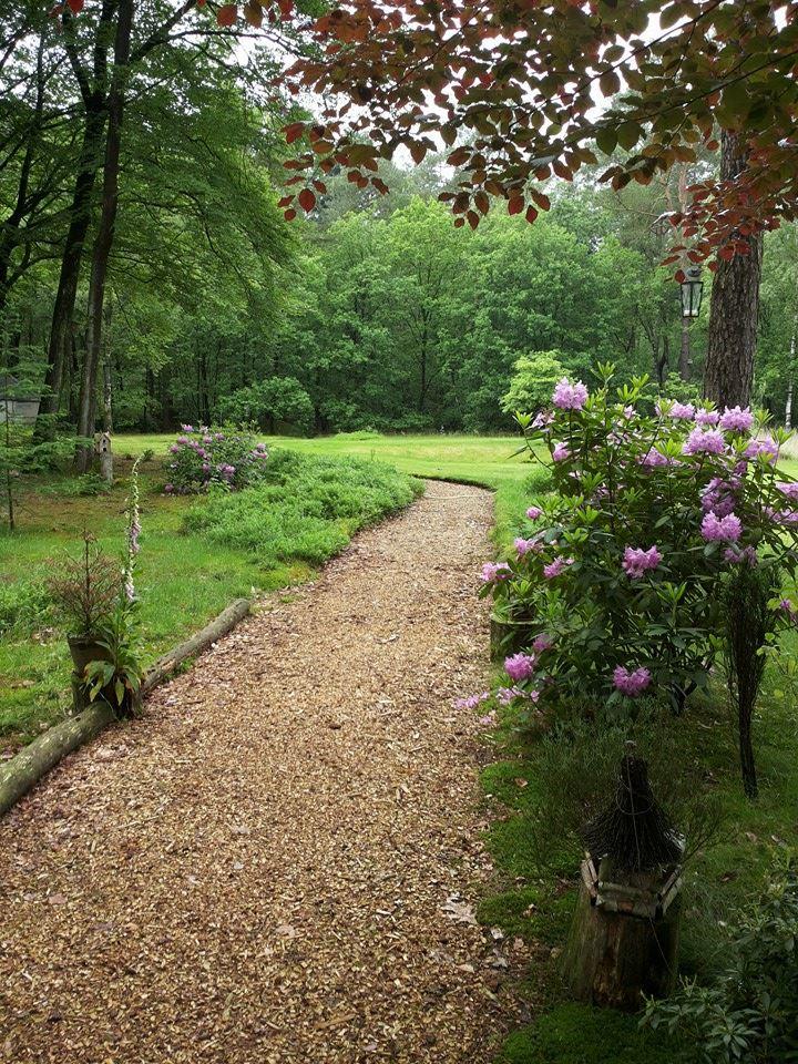 Bostuin, in het voorjaar vele Rododendrons in bloei