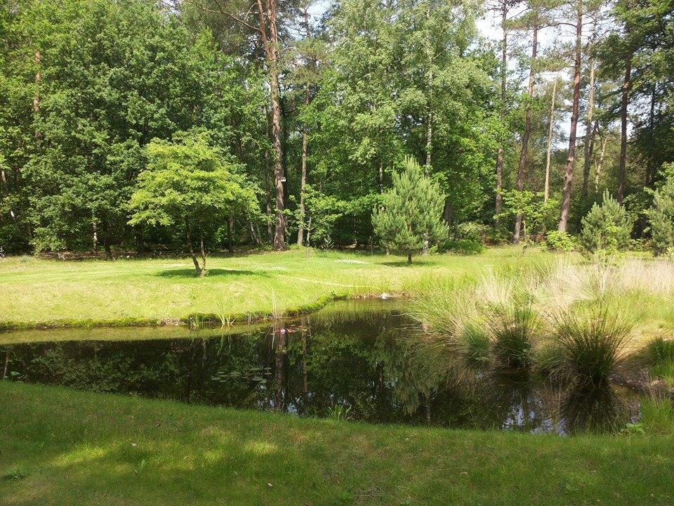 Tuin van Bed & Breakfast & Vakantiewoning Viva la Veluwe, juni 2014